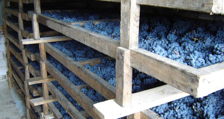 Saffer Wein Weingut Josef Pleil