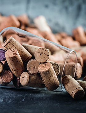 Jeden Monat 20 Weine verkosten