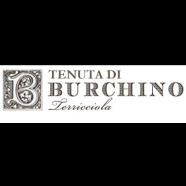 Burchino
